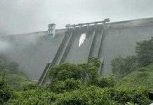 Four dams opened in Kochi after heavy rains in Kerala