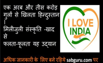poem-on-independence-day-in-hindi-with-love-by-all-indian