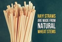 Natural straw made from wheat stem