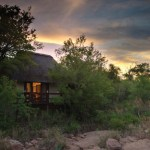 Sabi Sabi Private Game Reserve Little Bush Camp Suite Exterior