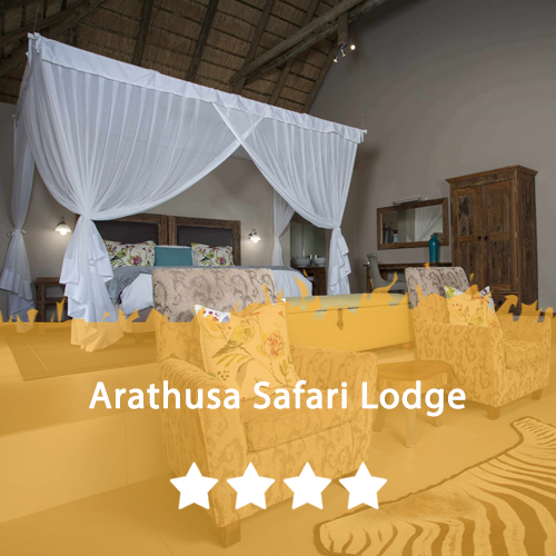Arathusa Safari Lodge Featured Image