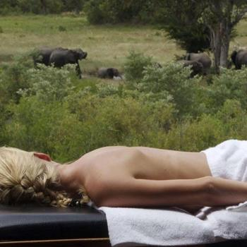 Elephant Plains Game Lodge Accommodation Activities Spa