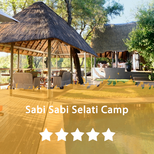 Sabi Sabi Selati Camp Featured Image