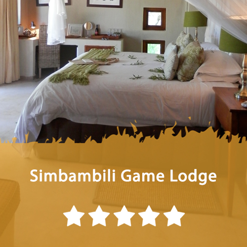 Simbambili Game Lodge Featured Image