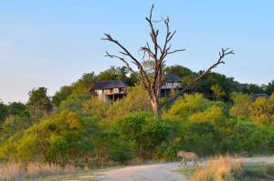 Leopard Hills Private Game Reserve Lodge Exterior