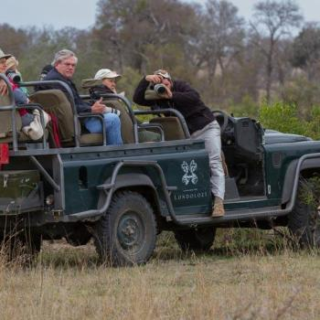 Londolozi Pioneer Camp Accommodation Activities Game Drives