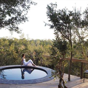 Londolozi Pioneer Camp Accommodation Luxury Suite Deck Pool