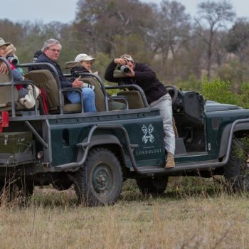 Londolozi Tree Camp Accommodation Game Drive
