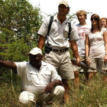 Londolozi Varty Camp Accommodation Activities Game Tracking