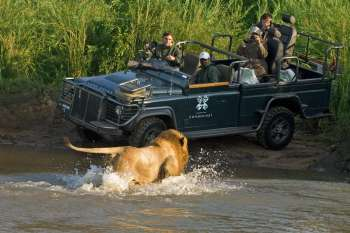 Londolozi Varty Camp Land Rover