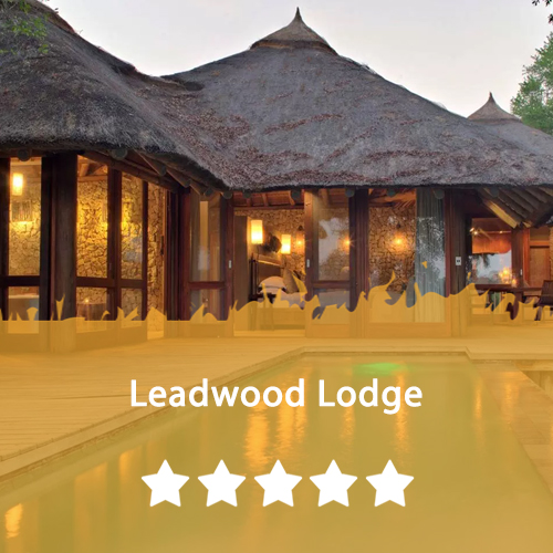 Leadwood Lodge Featured Image