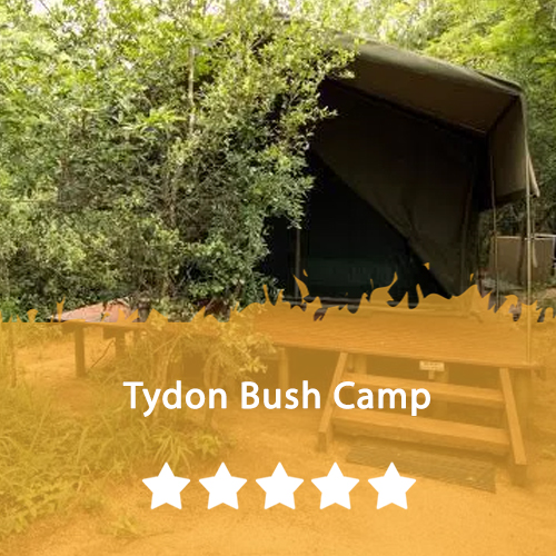 Tydon Bush Camp Featured Image