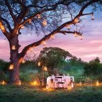 Lion Sands Treehouses Bush Evening Dining
