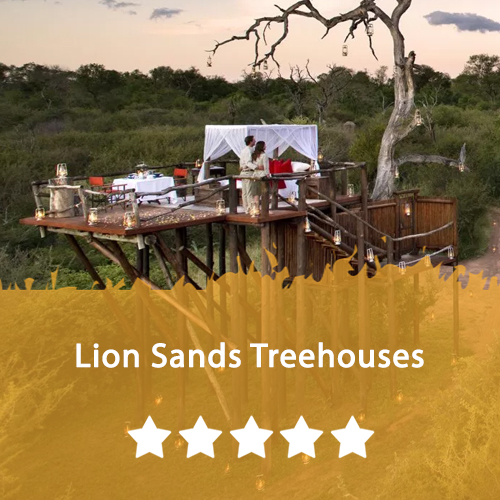 Lion Sands Treehouses Featured Image