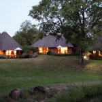 Mala Mala Game Reserve Main Camp Camp Grounds