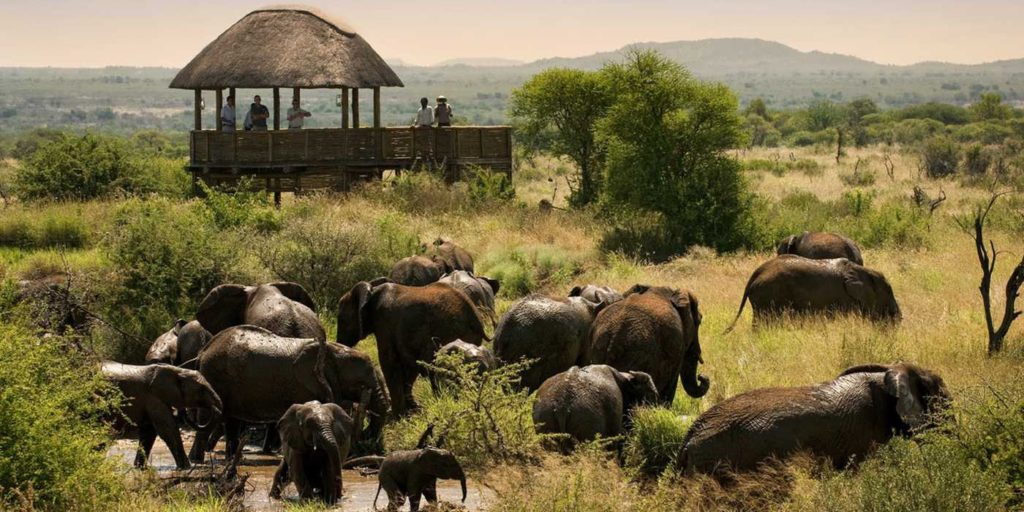 madikwe-safari-lodge