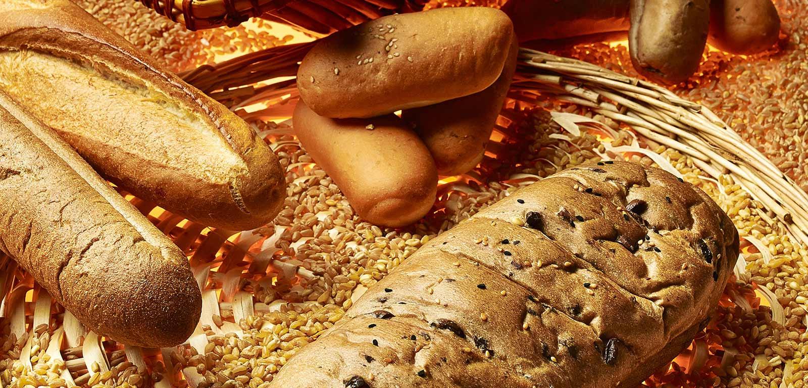 Sabitech Bakery equipments Lebanon bakery machines