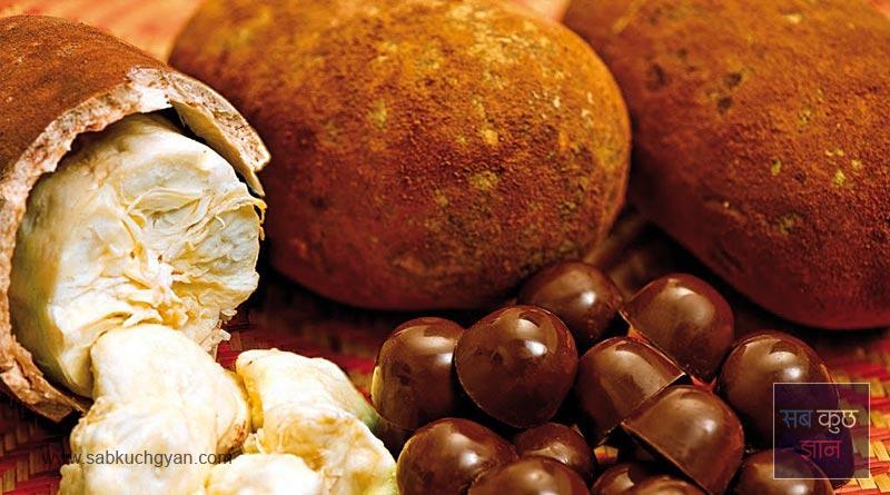 Ackee, Rambutan, Physalis, Jabuticaba, African Horned Cucumber, Durian, मैंगोस्टीन -Mangosteen, चेरिमॉय -Cherimoya, कुपुआकू -Cupuacu, amazing fruits, african fruits