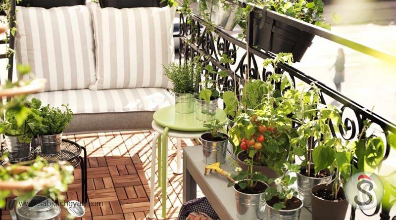 balcony-gardening-2