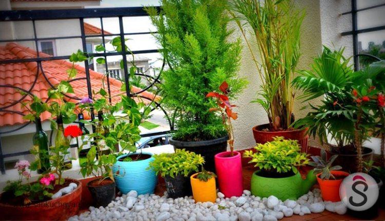 balcony-gardening-3