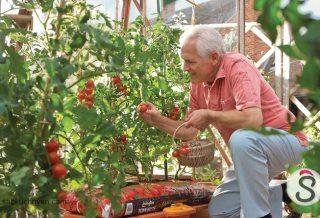 Tips-for-Gardening-Gardening-Tips