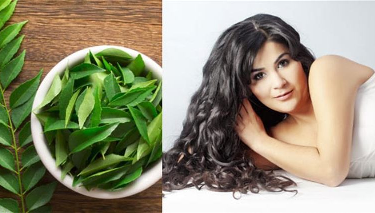 black hairs / curry leaves / white hairs