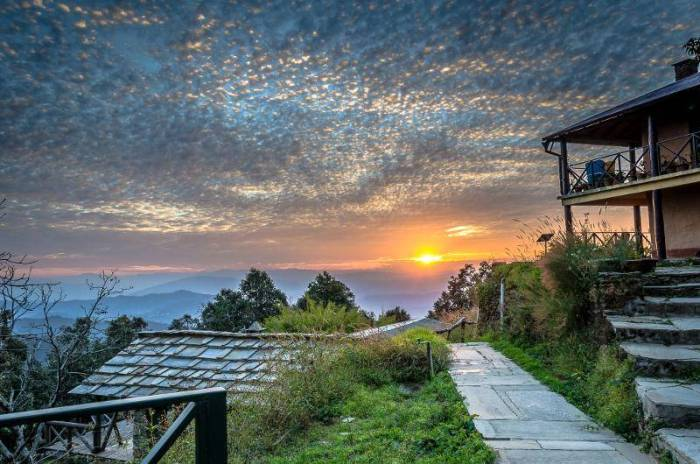 travel-place-peace-and-happiness-should-go-to-this-place-in-uttarakhand-dhanaulti-and-binsar (6)
