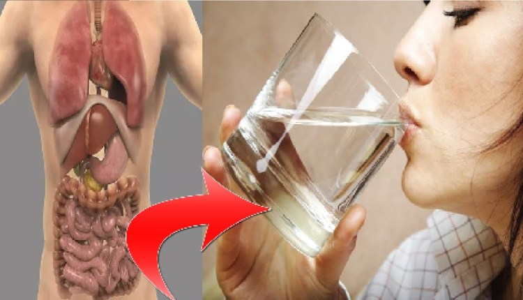 Is your habit, drinking water only in the morning So please note here