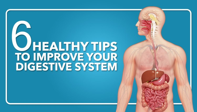 With the help of these tips, strengthen your digestive system