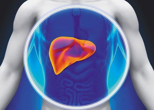 get rid of fatty liver