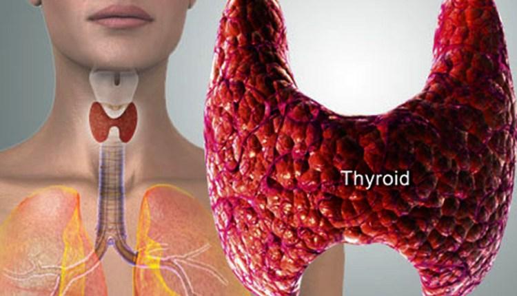 thyroid treatment in Hindi