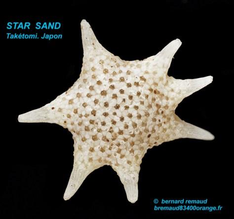 star-sand-taketomi-1-texte