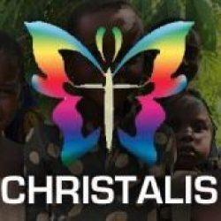 partner_logo_christalis