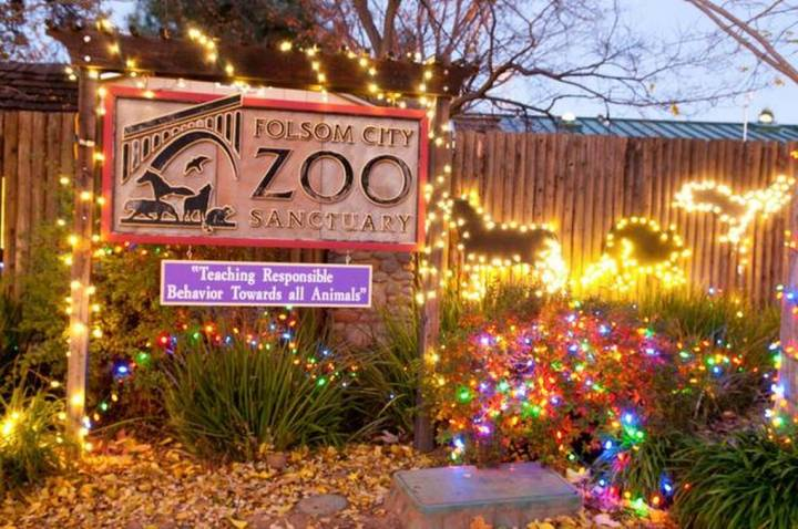 Folsom Zoo Christmas Lights 2017