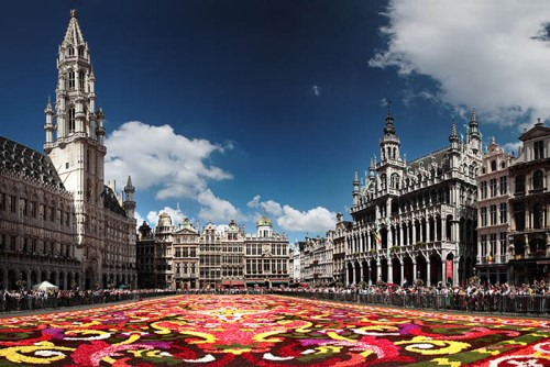 Flower display at Brussels Grand Place, flower carpet, bruxelles, grand place, what to do in bruxelles