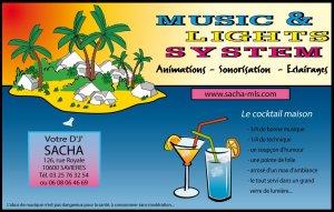 Carte de visite MUSIC-LIGHTS-SYSTEM