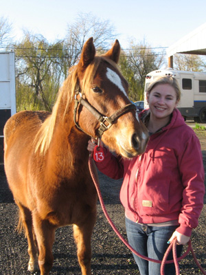 National Equine Resource Network's Low-Cost Gelding Clinic
