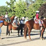 SHA Mini Summer Schooling Show Review