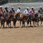 Popular Programs Return to the 20th Anniversary Western States Horse Expo!