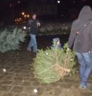 IKEA-Knut kann uns mal – Sachsenbike verbrennt selber Weihnachtsbäume