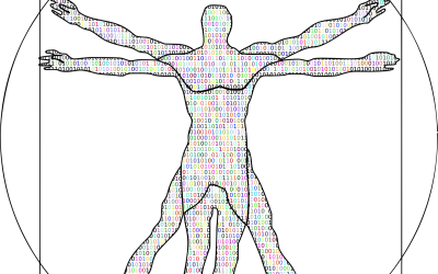 Descubre los secretos del Hombre de Vitruvio con estos ejercicios de fracciones con soluciones