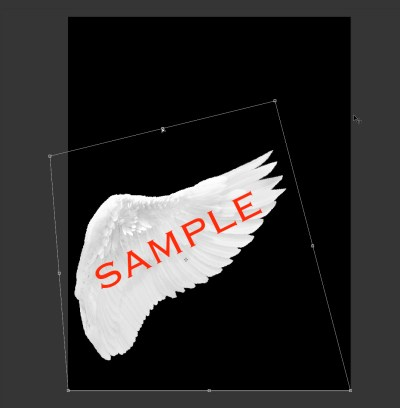 "Using the ""distort"" tool in Photoshop to manipulate the wing shape/position."