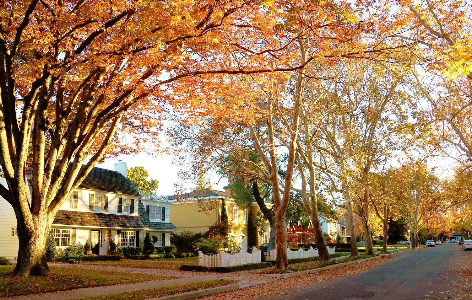 Sacramento: Best City in California for Fall Colors? via @sacramentopress