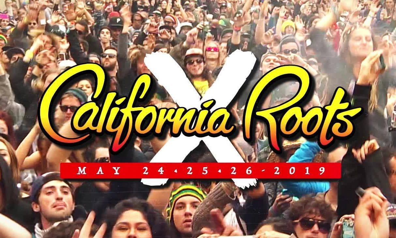 A Decade of California Roots via @sacramentopress