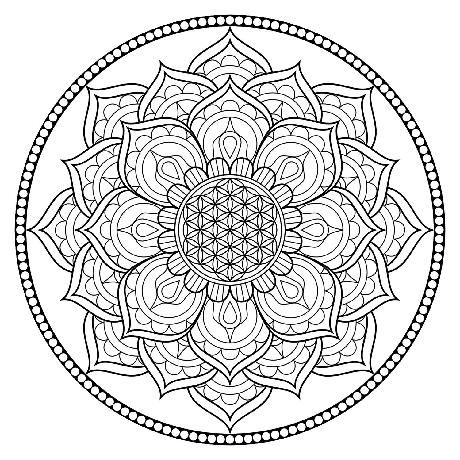 Relieve Daily Stresses With Beautiful Free Flower Of Life