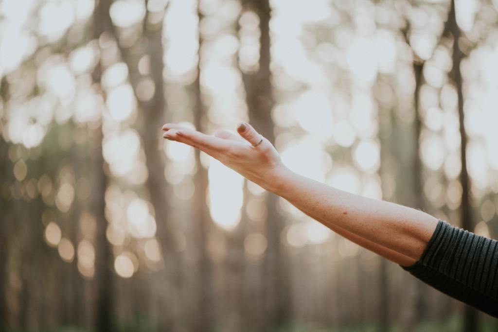 Is Reiki Certification Necessary? Podcast Episode by Timmie Horvath - The Sacred Wellness School of Healing Arts. Edmonton Reiki Training, Crystal Healing Certification, Chakra Therapy Certification, Aromatherapy and Essential Oils Workshops