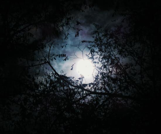 Full Moon in Scorpio by Timmie Horvath (Wanechko Policarpio) - The Sacred Wellness School of Healing Arts | Edmonton Reiki Training, Crystal Healing Certification, Chakra Therapy Certification, Aromatherapy, Essential Oil Safety