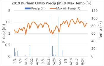 Figure 1. Precipitation (inches) and maximum air temperature (⁰F) at the Durham, CA CIMIS station from April through June 2019.