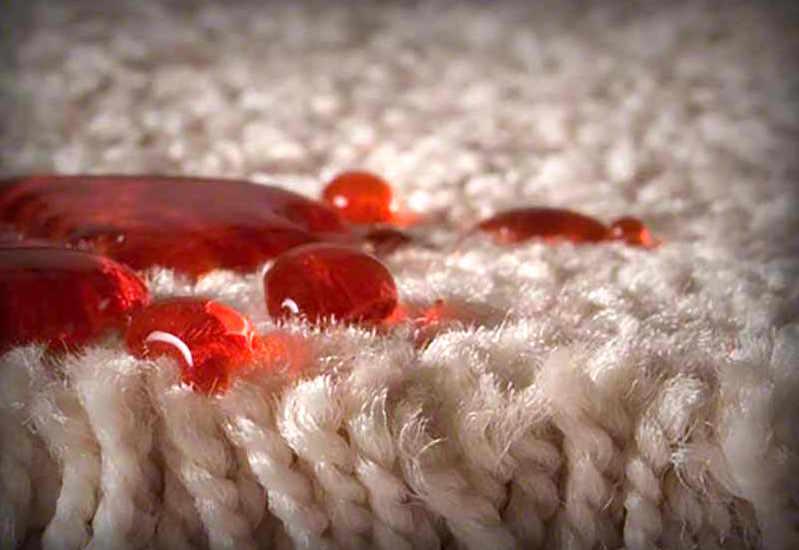 Stain Resistant I Carpet I Flooring I Installation I Mission Viejo