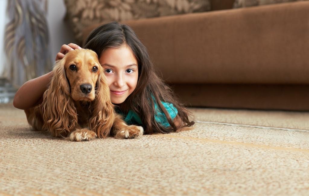 Mission Viejo CarpetI Mission Viejo Carpet Company I Saddleback Carpet & Flooring I Orange County Carpet Company I Orange County Carpet